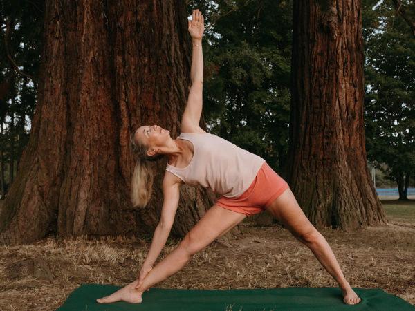 Yoga Iyengar Thonon - Cours de yoga doux