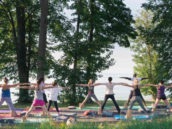 Ateliers de pratique du yoga IYENGAR